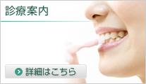 歯についての豆知識 詳細はこちら